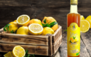 Sirop de citron bio Les paniers davoine provence bio