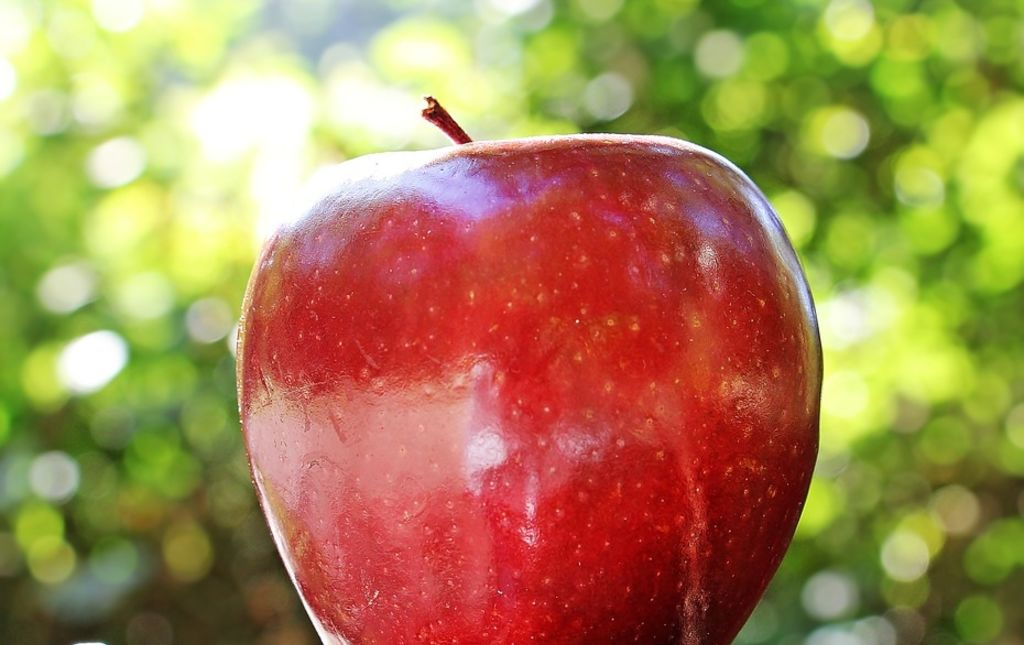 pomme Prim-rouge bio