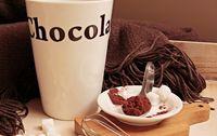 cacao maigre en poudre