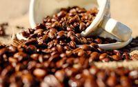 Café bio Ethiopie Torban en grain