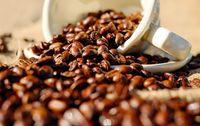 Café bio Indonésie Shere Khan en grain