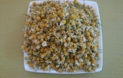 Tisane Camomille fleurs bio