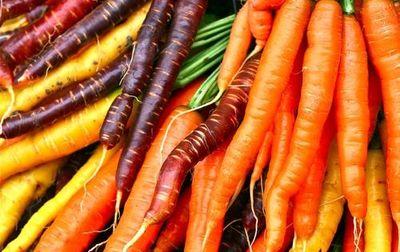 Carottes Rainbow multicolores bio