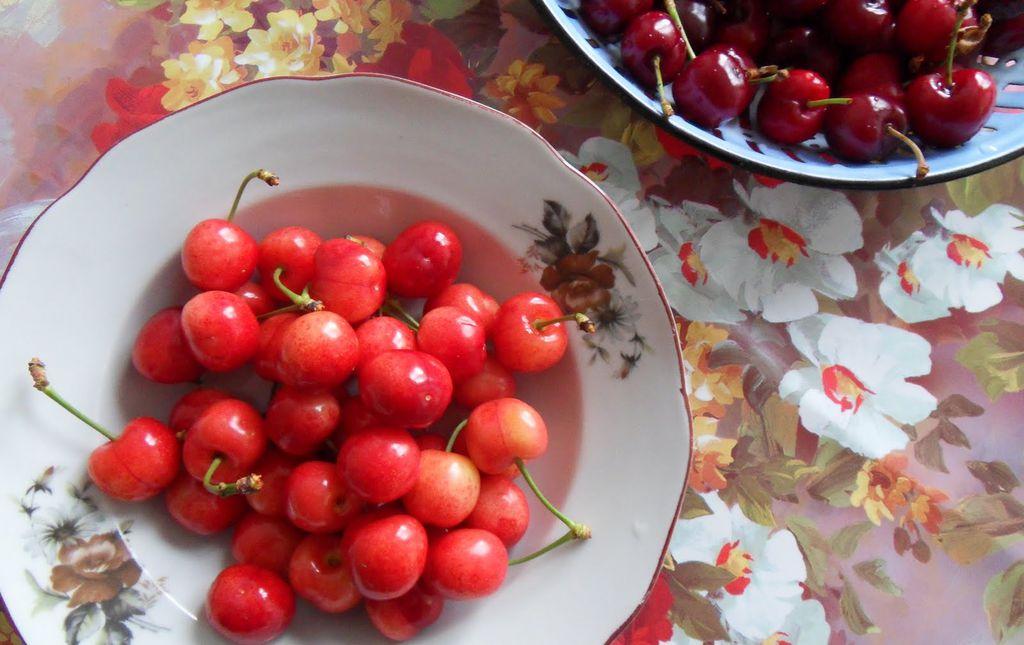 Cerises blanches Rainier bio