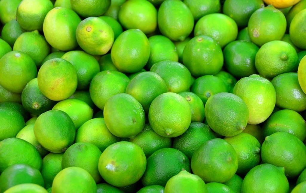 Citron vert Lime bio de Corse Les Paniers Davoine