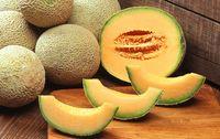 Melon bio calibre 12 provence paniers davoine