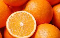 Orange corse bio navel