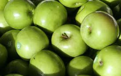 Pomme Granny Smith bio