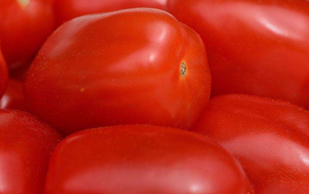 Tomates Roma Provence Les Paniers Davoine