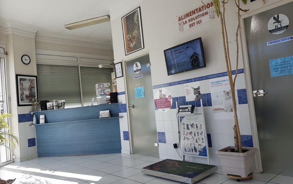 Clinique Vétérinaire de la Corniche