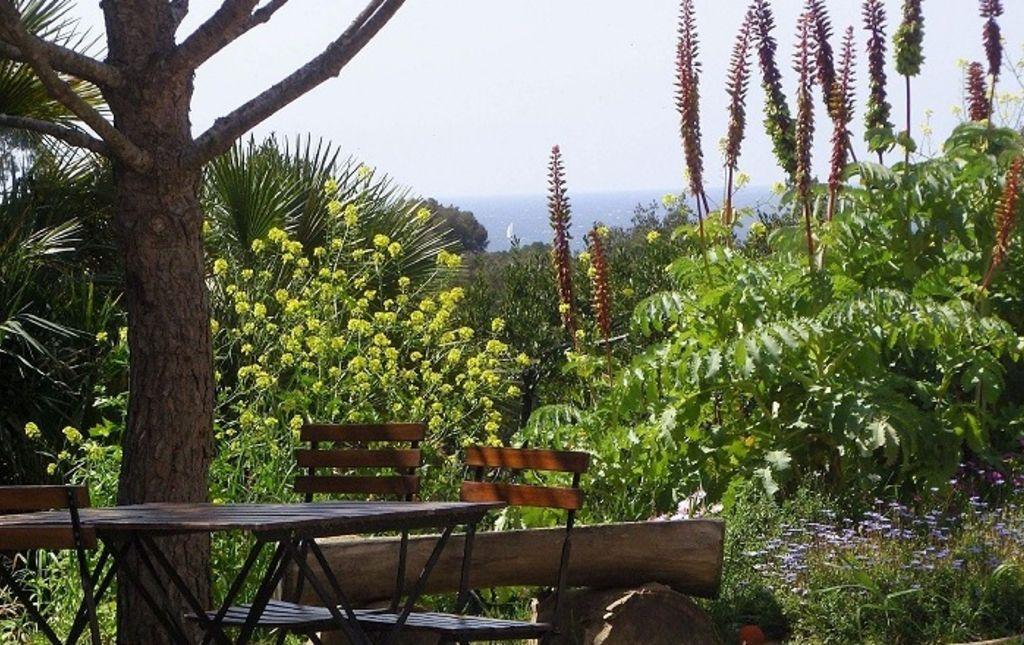 Café des Jardiniers - Domaine du Rayol